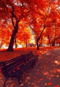 """Обложка книги """"Я мечтаю полюбить осень"""""""