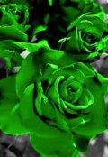 "Обложка книги ""Зелёная роза - роза желаний (6)"""