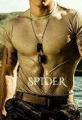 """Cubierta del libro """"Spider. """""""