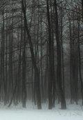 """Обложка книги """"Темный снег"""""""