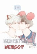 "Cubierta del libro ""Because i'm a weirdo? [chanbaek]"""