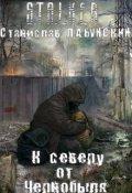 """Обложка книги """"К северу от Чернобыля"""""""