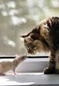 """Обкладинка книги """"Професор Розенталь і його блакитний кіт"""""""
