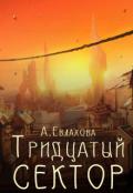 """Обложка книги """"Тридцатый сектор"""""""