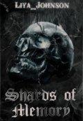 "Обложка книги ""Shards of Memory"""