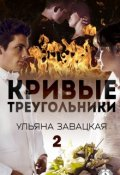 """Обложка книги """"Кривые треугольники  книга 2"""""""