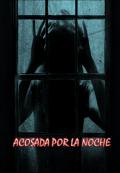 """Cubierta del libro """"Acosada Por La Noche"""""""