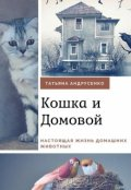"""Обложка книги """"Приключения Кошки и Домового"""""""