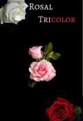 """Cubierta del libro """"Rosal Tricolor"""""""