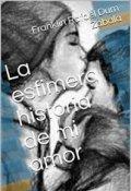 """Cubierta del libro """"La efimera historia de mi amor"""""""