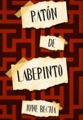 """Cubierta del libro """"Ratón de laberinto"""""""