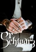 """Cubierta del libro """"Sr. Schwarz [pausada]"""""""