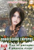 """Обложка книги """"Новогодний сюрприз или, Как не утонуть в утином озере"""""""