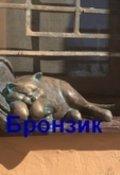 """Обложка книги """"Бронзик"""""""