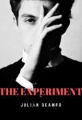 """Cubierta del libro """"El experimento"""""""
