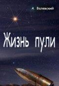 """Обложка книги """"Жизнь пули"""""""