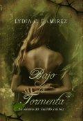 """Cubierta del libro """"Bajo La Tormenta (el 21 de diciembre A La Venta En Amazon)"""""""