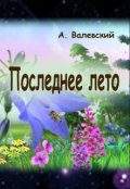"""Обложка книги """"Последнее лето"""""""