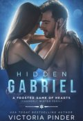 "Book cover ""Hidden Gabriel"""