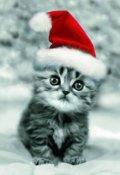 """Cubierta del libro """"Una Navidad azulada [cuento De Navidad]"""""""