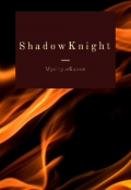 "Book cover ""Shadowknight"""