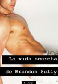 "Cubierta del libro ""La vida secreta de Brandon Sully"""