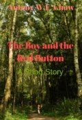 "Book cover ""The Boy and the Red Button"""
