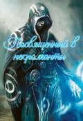 """Обложка книги """"Посвященный в никроманты"""""""