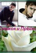 """Обложка книги """"Снежок и Прынц"""""""