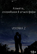 """Обложка книги """"Комета сгоревшая в атмосфере"""""""