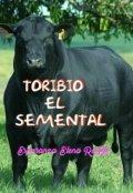 """Cubierta del libro """"Toribio, El semental"""""""