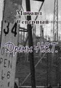 """Обложка книги """"Дрёмы Н.Е.Т."""""""