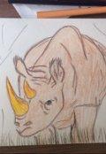 "Обложка книги ""Приключeния барона Мюнхгаузена. Носорог с золотым рогом."""