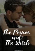 """Book cover """"The Prince and The Witch: A Divergent Fairy Tale"""""""