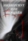 """Обложка книги """"Низвергнут или окрылён"""""""