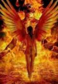 """Обложка книги """"Фениск дух огня.....возвращение """""""