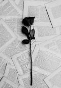 """Cubierta del libro """"Lo que necesitas leer."""""""