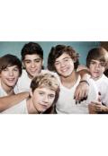 "Обложка книги ""One Direction - секс слава"""