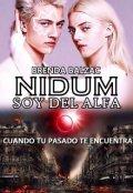 """Cubierta del libro """"Nidum-Soy del Alfa© (completa) """""""