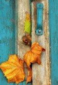 """Обкладинка книги """"Двері в чужу самотність"""""""