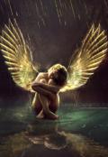 "Обложка книги ""Ангел"""