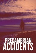 """Book cover """"Precambrian Accidents"""""""