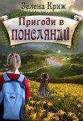 """Обкладинка книги """"Пригоди в Понсляндії (1)"""""""