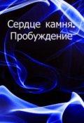 """Обложка книги """"Сердце камня. Пробуждение"""""""