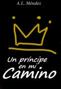 """Cubierta del libro """"un príncipe en mi camino"""""""