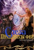 """Обложка книги """"Слеза Принцессы Фей"""""""
