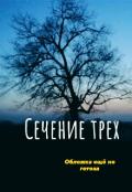 """Обложка книги """"Сечение трёх"""""""
