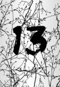 "Обложка книги ""13"""