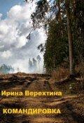 """Обложка книги """"Командировка"""""""