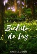 """Cubierta del libro """"Bichito de Luz"""""""